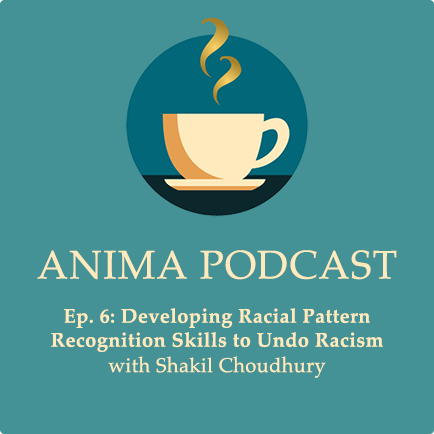 Episode 6: Developing Racial Pattern Recognition Skills to Undo Racism